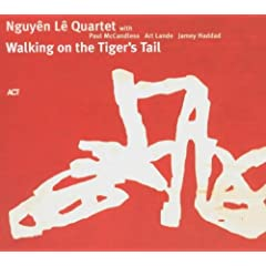 Walking On A Tiger's Tail