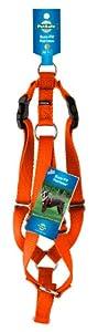 "PetSafe Surefit Dog Harness, 3/8"" Petite, Blaze Orange"