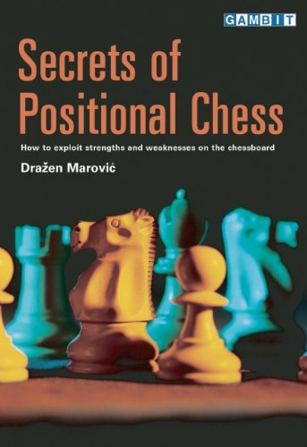 Secrets of Positional Chess (Chess Positional compare prices)