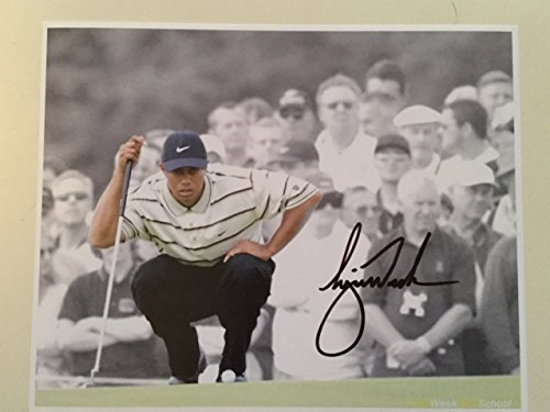 Tiger Woods Golf rare signed 8x10 photo w/COA (Tiger Woods Photo compare prices)