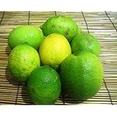 「数量限定」ノーワックス「国産レモン」防腐剤・防かび剤不使用 農薬・化学肥料不使用 1kg