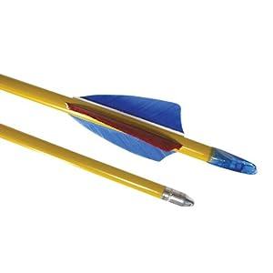 Buy Cajun Archery Standard Poplar Wood Arrows - Pack of 72 (Length: 28) by Cajun Archery