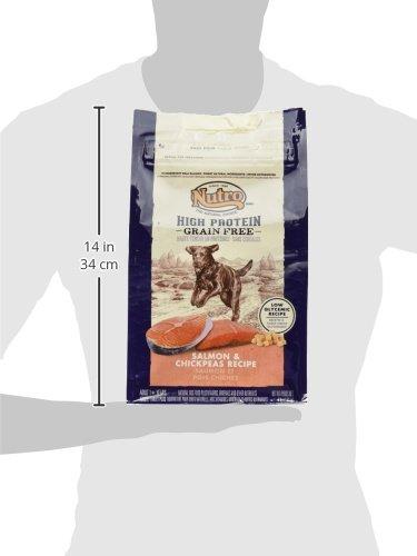 Nutro High Protein Grain Free Dog Food