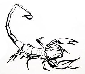 Amazon.com: Scary Scorpion with outline , Vinyl stickers , sticker