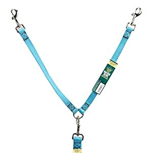 Guardian Gear Nylon 2-Way Small Dog Coupler with Nickel Plated Swivel Clip, 4-Inch, Mailbu Blue