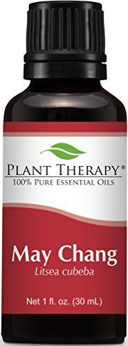 May Chang (also known as Litsea Cubeba). 30 ml (1 oz). 100% Pure, Undiluted. by Plant Therapy Essential Oils