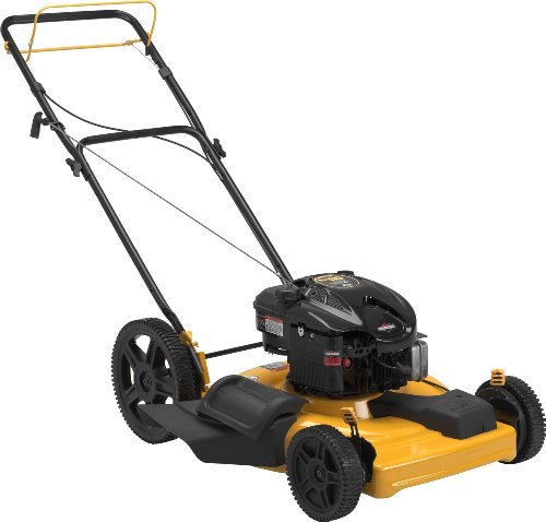 Poulan Pro PR625Y22SHP High-Wheel Forward Side Discharge/Mulch Push Mower, 22-Inch