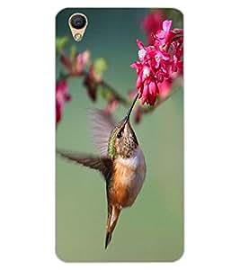 ColourCraft Beautiful Bird Design Back Case Cover for OPPO F1 PLUS