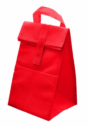 Non Woven Insulated Cooler Lunch Bag, Red with Grey by BAGS FOR LESSTM - 1
