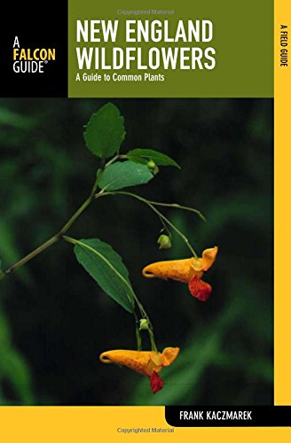 New England Wildflowers: A Guide to Common Plants (Wildflower Series)