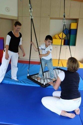 Therapieschaukel – PlattformPlus S12 rechteckig / Farbe: silber / Maße: 125 x 65 x 6,5 cm / Gewicht: 9 kg online bestellen