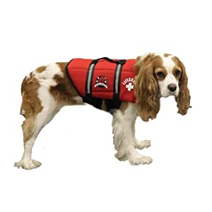 Paws Aboard Large Neoprene Designer Doggy Life Jacket, Red Lifeguard