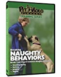 Dog Breaking Naughty Behaviors DVD