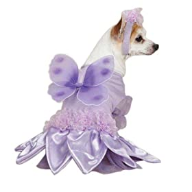 Sugar Plum Fairy Dog Costume Size: X-Small (10