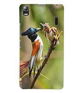 ColourCraft Bird Design Back Case Cover for LENOVO A7000