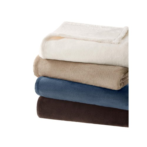 Micro Tec Plush Blanket In Chocolate Size: Twin front-205431