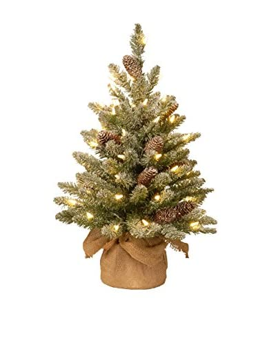 National Tree Company 2' Snowy Concolor Fir Small Tree in Burlap