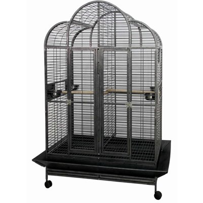 Bird Cages : Scalloped Top Bird Cage CFDS-DV483578-4001