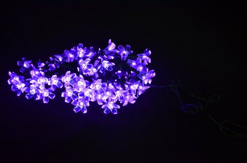 INST Solar Powered 50 LED Peach Blossom String Light for Outdoor and Indoor Use (Purple)