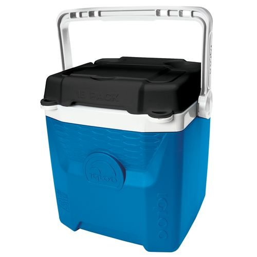 Electric Can Cooler ~ Igloo quantum can cooler electric blue liter qt
