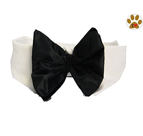 Black Satin Formal Bow Tie and Collar with Button Pin- Dog Sizes XS thru 3XL (Small- fits Neck 11