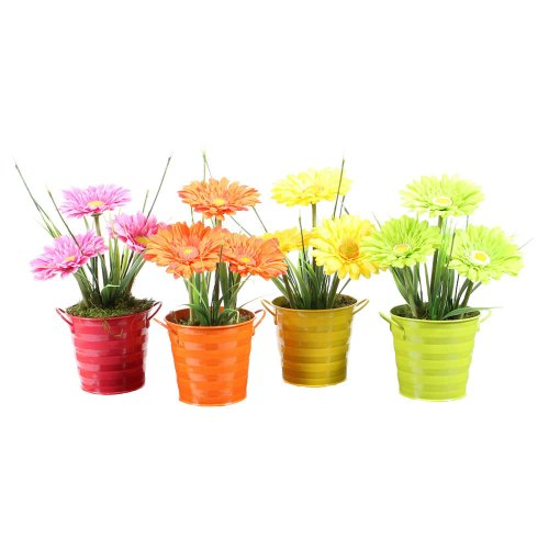 Vickerman Assorted Artificial Gerbera Daisies With Small Colorful Metal Buckets