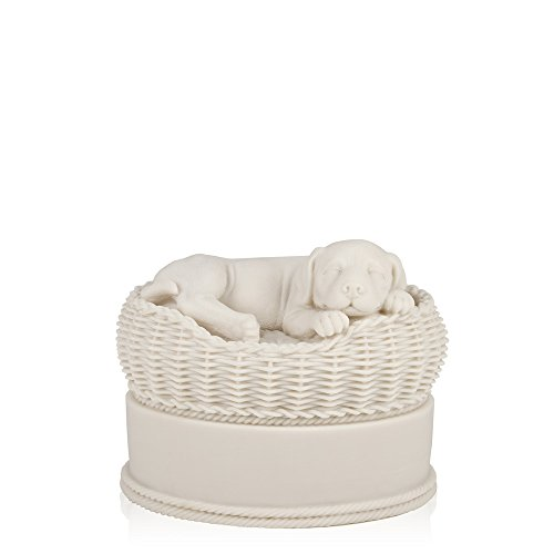 Perfect Memorials Small White Dog in Basket Cremation Urn (Pet Urns For Outside compare prices)