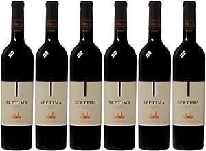 Septima Malbec Wine 2013 75 cl (Case of 6)