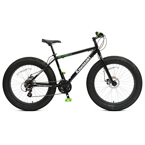 Kawasaki   Fat Tire  Speed Mountain Bike