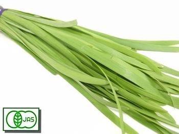 繊維が少なく食べやすい♪宮崎県産 有機栽培【ニラ】約100g(袋入り)