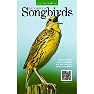Hachette/Quarto Publishing9781591866169Songbirds Book-NA SONGBIRDS BOOK