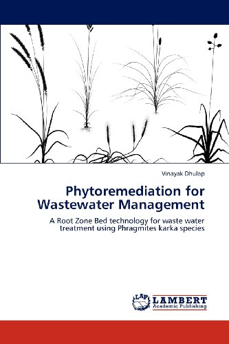 Phytoremediation for Wastewater Management: A Root Zone Bed technology for waste water treatment using Phragmites karka