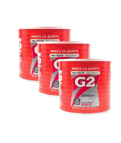 Gatorade Perform G2 02 Perform Thirst Quencher Instant Powder Fruit Punch Drink 19.4 Oz. (Pack Of 3)