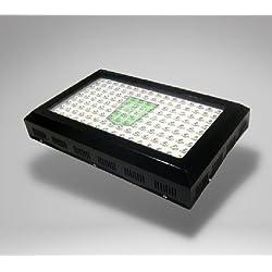 G8 LED 450W