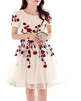 Jaybhavanifashion Women's Dress(csos-red-rose_white_X-Large)