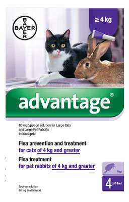 advantage-80mg-spot-on-solution-for-large-cats-and-pet-rabbits-over-4kg