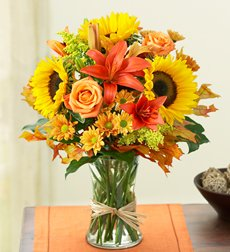 Flowers by 1800Flowers - Fields of Europe for Fall - Medium