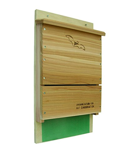 Looker-Songbird-Essentials-Organization-for-Bat-Conservation-OBC-Single-Chamber-Bat-House