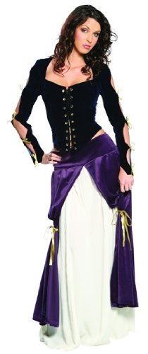 Lady Musketeer Plus Costume (Women's Adult Costume)