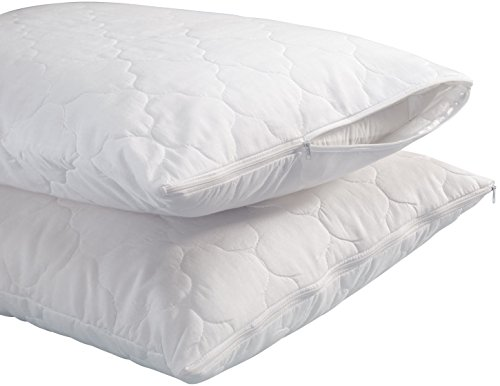 WalterDrake Standard White Quilted Pillow Covers - Set Of 2 (Pillow Case Quilted compare prices)