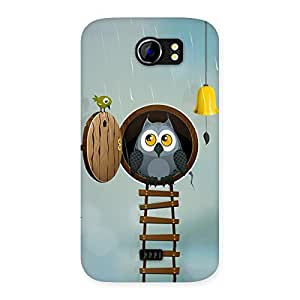 Gorgeous Raining Leader Owl Back Case Cover for Micromax Canvas 2 A110