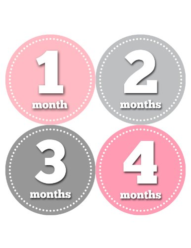 Months in Motion 046 Monthly Baby Stickers Baby Girl Months 1-12 Pink Grey