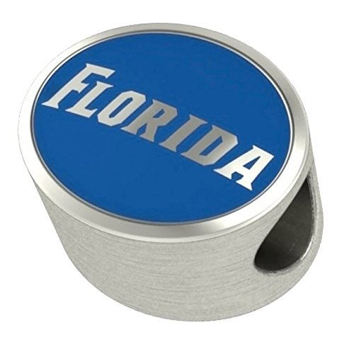 Florida Gators Enamel Bead Fit Most European Style Beaded Charm Bracelets