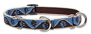 Lupine 3/4-Inch Muddy Paws 10-14-Inch Martingale Combo Collar for Small to Medium Dogs