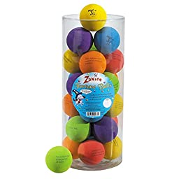 Zanies Fortune Balls for Dogs, 24-Piece Canisters