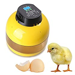 Magicfly Digital Eggs Incubator with Egg Turner Poultry Hatch