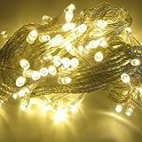 Sellify Warm White : 10M 100 LED String Decoration Light For Festival Party 220V-Warm White
