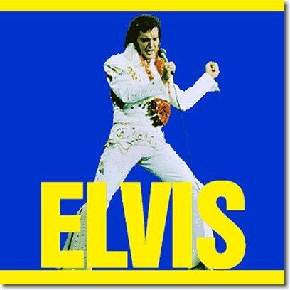 Elvis Presley - Elvis 1973 Album - Zortam Music