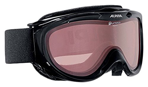 ALPINA Skibrille Freespirit One size