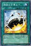 遊戯王シングルカード 神秘の中華なべ ノーマル sd13-jp025